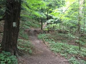 Chesney Trail Hill