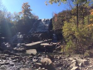 Mount Albion Falls
