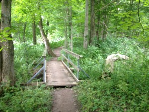 Kains Woods Bridge