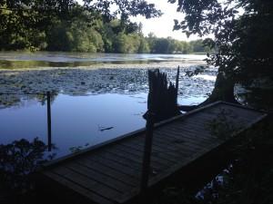 Springwater Dock