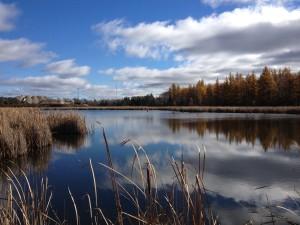 Laurier Trail Waterside