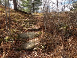 Laurier Woods Trail Rocky Sections
