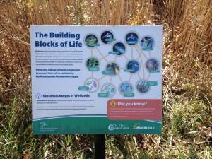 Wawanosh Biodiversity