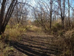 Wawanosh Trail