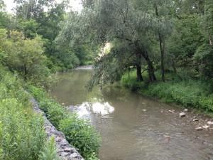Medway Creek