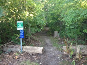 trail-start