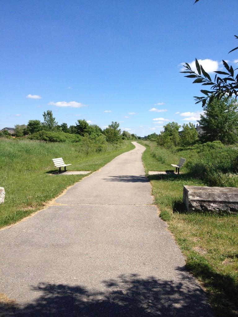 Trails Open Hyde Park Trail