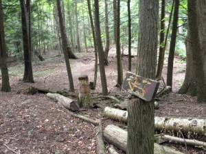 Chesney Trail Marking