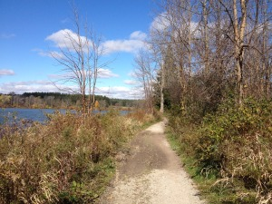Fanshawe Lake Trail