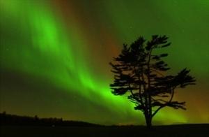 Northern Lights KW