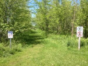 Grass Trail Entrance
