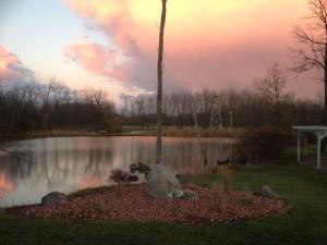 Bridgeview Pond