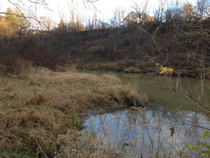 Bridgeview River