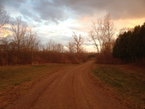 Bridgeview Road