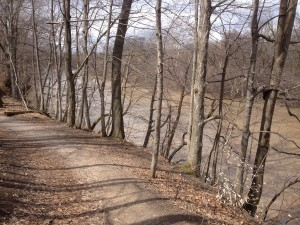 Meadowlily Woods Trail