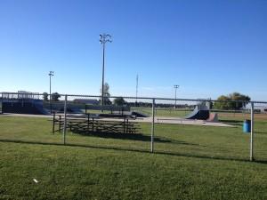 skateboarding-spectator-sport