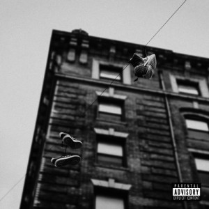 apollo-brown-x-skyzoo-easy-truth