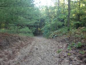 ausable-sand-trail